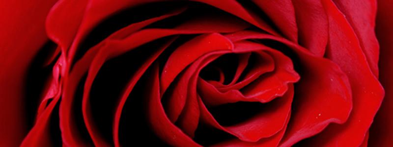 Broadway Restaurant Plans a 2nd Valentine's Day