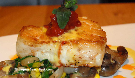Chilean Sea Bass - 230 Forest - Laguna Beach