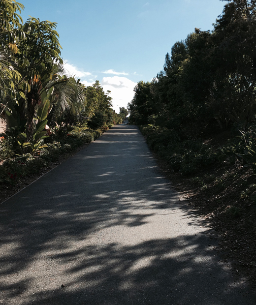 Sidewalk crossthrough in Dana Point