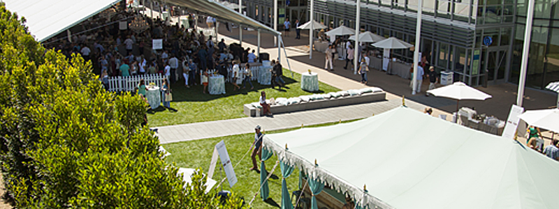 Newport Beach Wine & Food Festival: The Don't-Miss Event This Fall