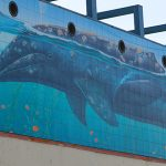 Wyland Turns 60, Throws Painting Party on Sunday