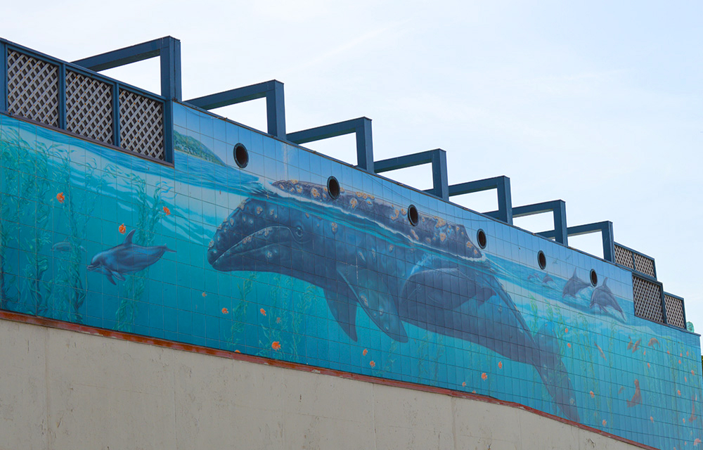 Wyland wall in Laguna Beach