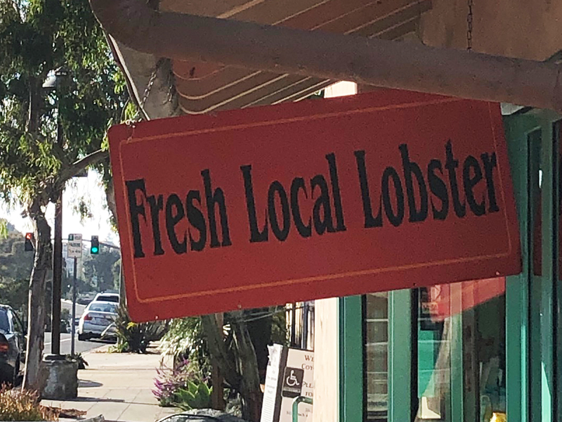 Local Lobster Season is On but No Local Lobster to Be Found